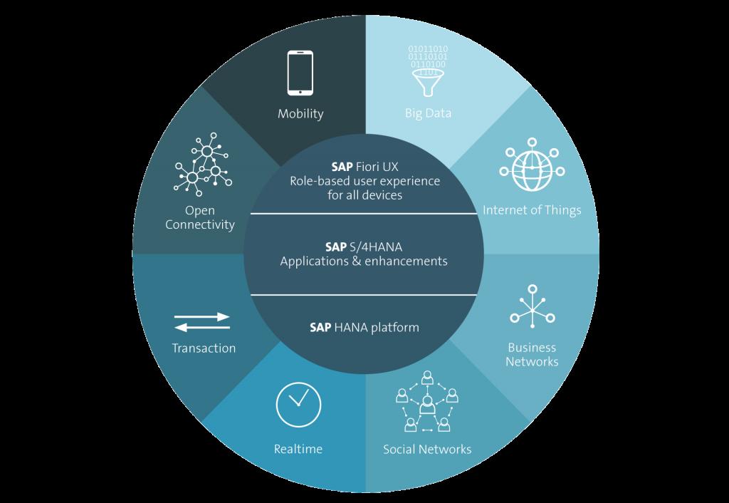 SAP s/4 hana tool